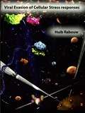 Thesis cover: Viral evasion of cellular stress responses